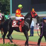 日本海スプリント2019|最終予想|7月9日(火)金沢11R|超混戦模様の900m戦!このレースを紐解くのは先行力!スピードがある馬から馬連で勝負!!
