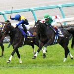 神戸新聞杯2019|枠順確定|有力馬診断|最終追い切り診断|追い切りNo.1は1番人気サートゥルナーリア!最終追い切りから見つけた穴馬候補を公開中!!