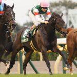 シンザン記念2020|最終予想|1月12日(日)京都11R|名牝が誕生するか!?2週続けて追い切り抜群のタガノビューティーか、素質馬ルーツドールか!?本命はアノ馬で勝負!!