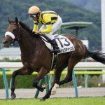 クイーンカップ2020|最終予想|2月15日(土)東京11R|3歳牝馬クラシックに向けて!牝馬出世レースを制するのはルナシオンかマジックキャッスルか!?本命は外厩仕上げのアノ馬で勝負!!