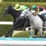 黒船賞2020|最終予想|3月10日(火)高知5R|絶対的JRA馬有利、連覇を目指すサクセスエナジーもローテーションに疑問も・・・本命にアノ馬を指名し勝負!!