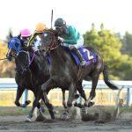 若草賞2020|最終予想|3月26日(木)名古屋11R|地元馬よりも遠征馬を支持、ポピュラーソングやステラモナークに注目!本命はアノ馬から勝負!!