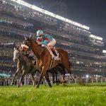 ヴィクトリアマイル2020|最終予想|5月17日(日)東京11R|天栄仕上げアーモンドアイは本命にせず!本命馬はしがらきのアノ馬から勝負!