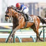 目黒記念2020|最終予想|5月31日(日)東京12R|キングオブコージなどの人気馬よりも買いたいのは穴馬のアノ馬!印と買い目を公開中!!