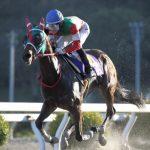 飛山濃水杯2020|最終予想|5月22日(金)笠松11R|パーフェクト連対中ミトノアミーゴ評価も3番手まで!本命はこのコース得意のアノ馬から勝負!!