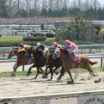 北日本新聞杯2020|最終予想|5月4日(月)金沢11R|断然人気ストロングフーヴスは心理合出来るのか!?本命はアノ馬から勝負!!